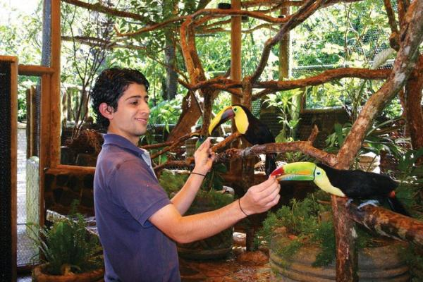 Enjoy guided aviary tours and feed the Tucans