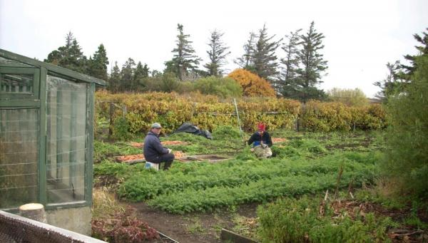The large organic garden provides fresh vegetables for meals