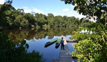 La Selva provides lodging in the midst of Amazon paradise