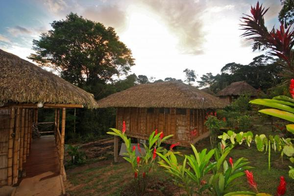 Guests are accommodated in thatched roof private bungalows
