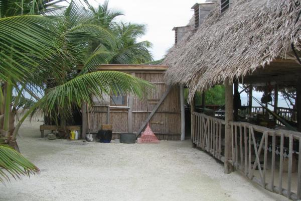 Many of the buildings at Billy Hawk Caye have thatched roofs