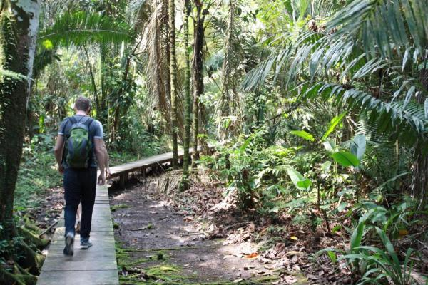 The buildings of La Selva are connected by raised wooden walkways for convenience