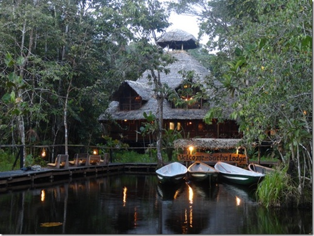 Sacha Lodge, located in the heart of Ecuadorian Rainforest