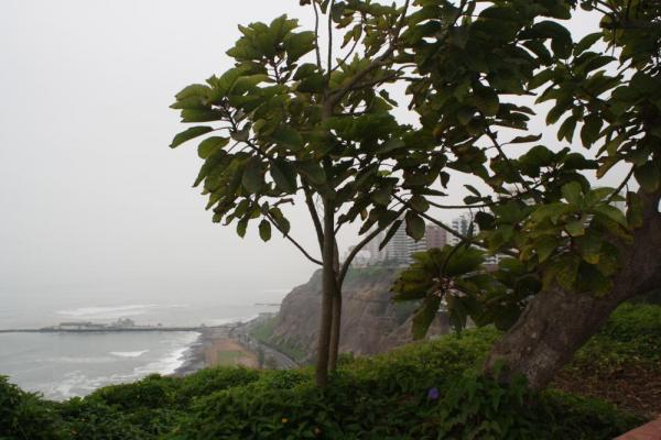 Overlooking the ocean in Lima