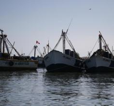 Fishing boats on the bay