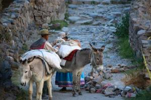 Along the trail to the Colca Lodge