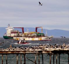 Sea in Punta Arenas as seen from Dreams Hotel