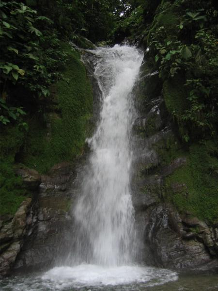 Waterfall at Selva Bananito