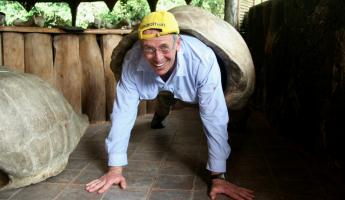 Pete as a Giant Tortoise