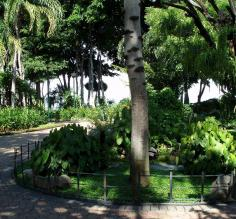 Botanical garden in Guayaquil
