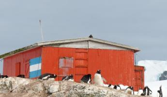 Old whaling hut oat Mikkelsen Harbour
