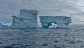 Icebergs at Spert Island