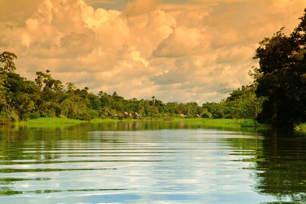 10 Best Amazon Tours & River Cruises - Rainforest Trips to