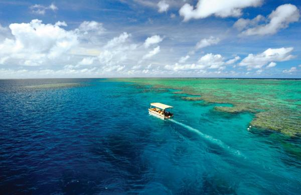 Take a glass-bottomed boat through the Great Barrier Reef.