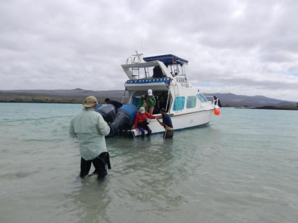 Wet landing in the Galapagos
