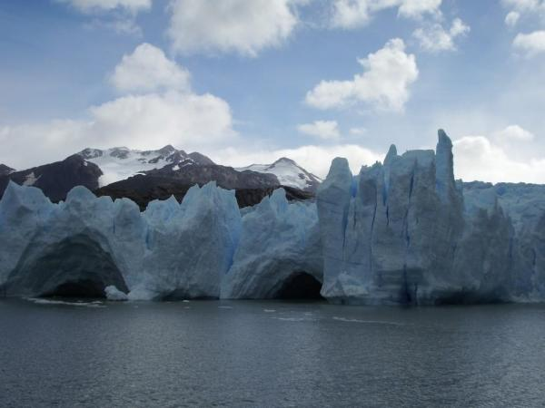 View of the Grey Glacier