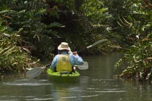 Explore the nature of Panama