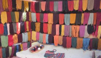 All the beautiful yarn!! And all naturally dyed