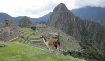 Machu Picchu!  We finally made it!