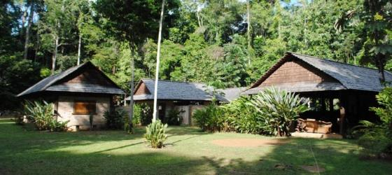 The lodge offers complete immersion into the rainforest experience