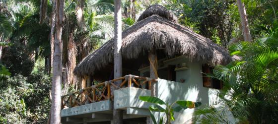 Welcome to Tailwind Jungle Lodge, nestled in the jungle outside of Puerto Vallarta