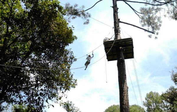 Soar through the forest canopy on the zipline system