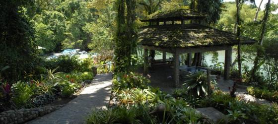 Welcome to Aguila de Osa Inn, where vacations of a lifetime occur in Costa Rica