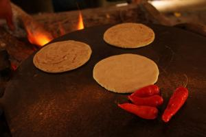 Making tortillas. The Living Maya Experience.