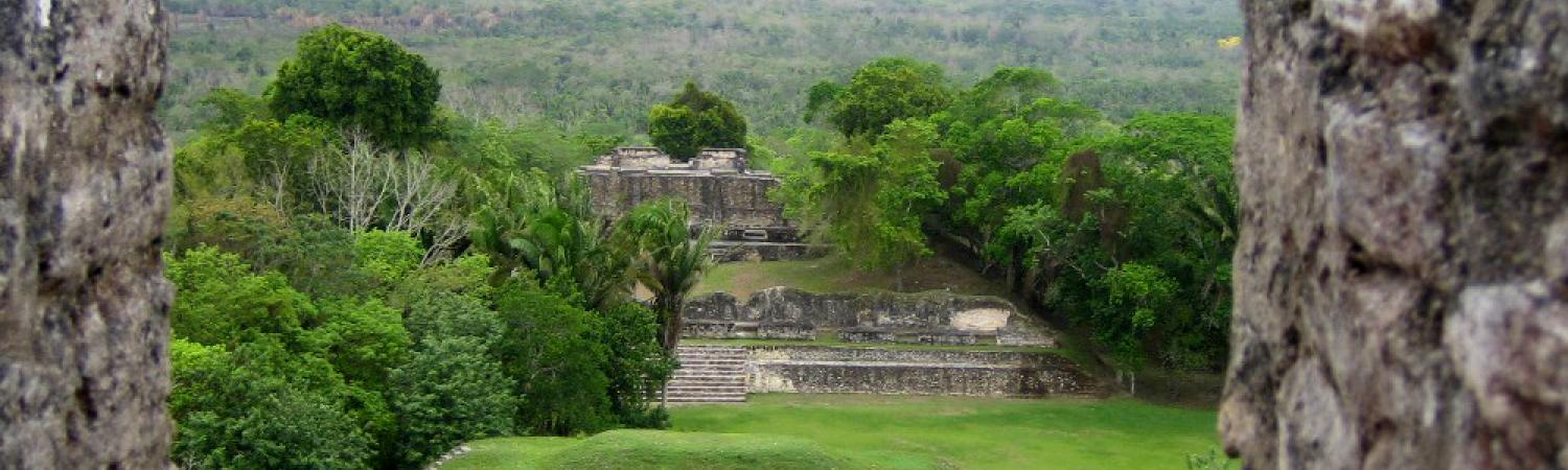 View of the Belizean rainforest from Xunantunich ruins