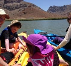 Family kayaking fun in the Sea of Cortez