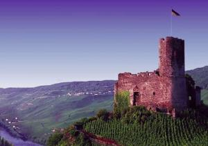 Sail by ancient castles as you voyage down the Danube on your Europe cruise