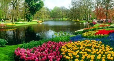 Wander through the celebrated Keukenhof Gardens during your springtime cruise through the Netherlands
