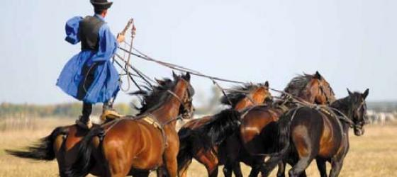 Horses gallop through Hungary\s celebrated Puszta region