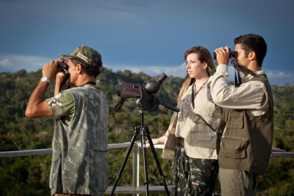 Searching for wildlife at Cristalino Jungle Lodge