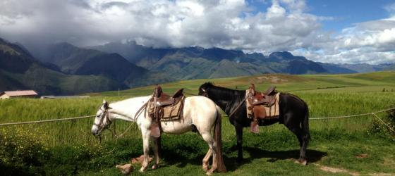 Horseback riding in Sacred Valley, Peru