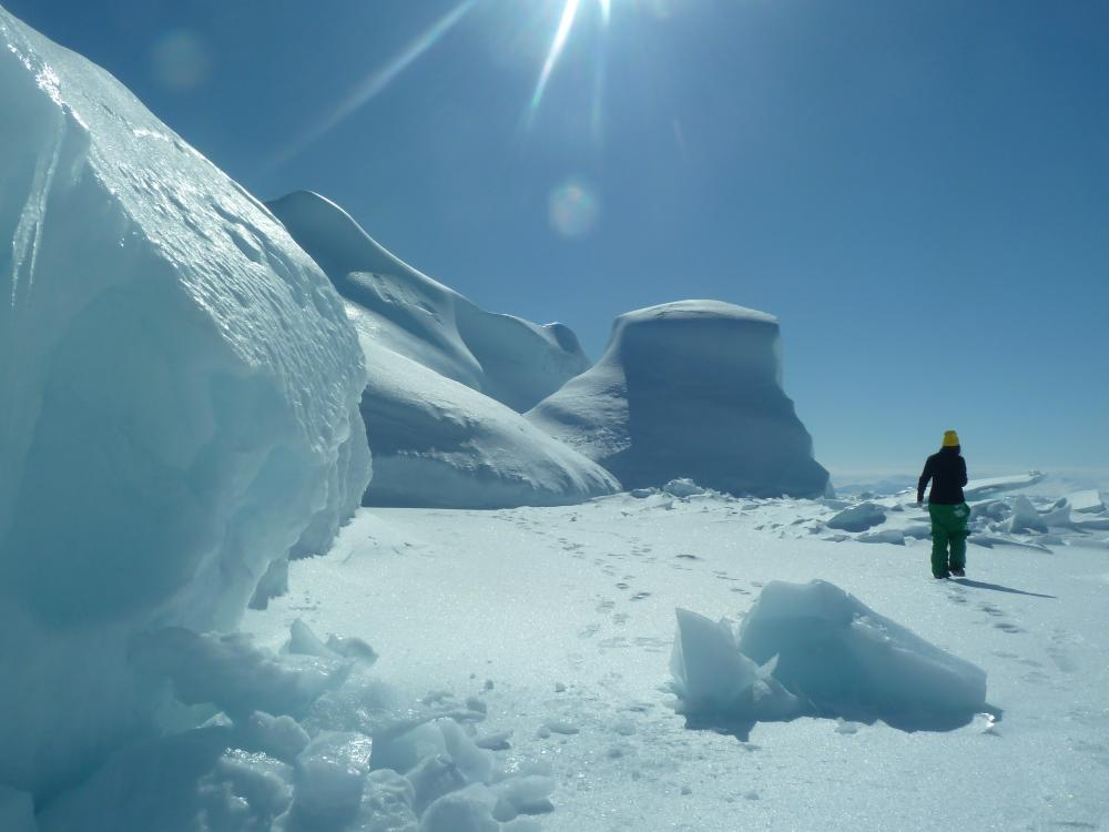 Playing on iceberg at floe edge