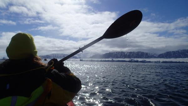 Kayaking on floe edge