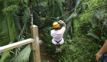 Ziplining in the Belizean rainforest