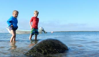 Children approach a sea turtle in Magdalena Bay