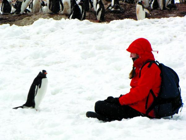 Sitting with a penguin