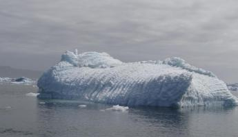 Pleated iceberg