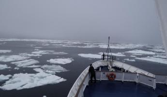 Approaching ice in Davis Strait near Canadian coast