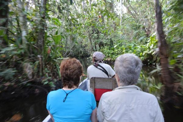 Touring the Amazon