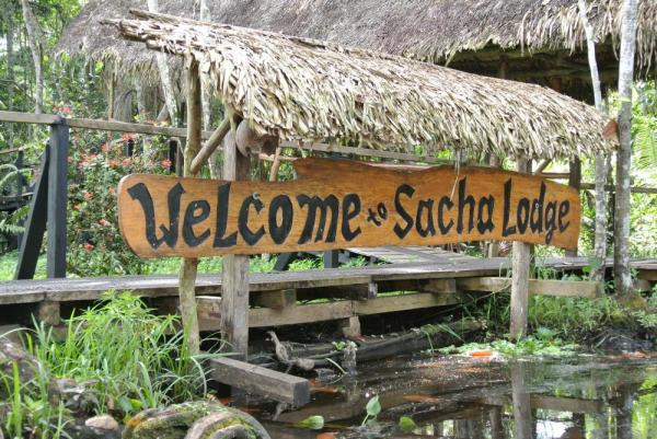 Welcome to Sacha Lodge