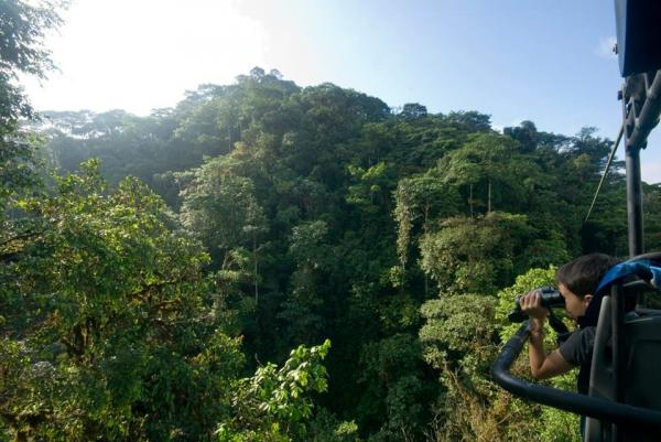 Experience stunning views of the canopy from the aerial bike at Mashpi Lodge