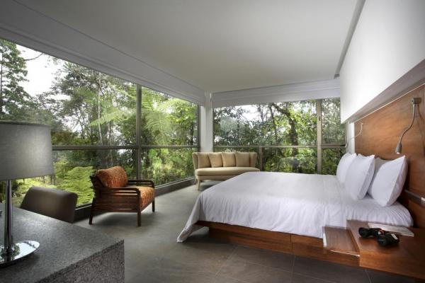 Enjoy magnificent views of the forest from your suite at Mashpi Lodge