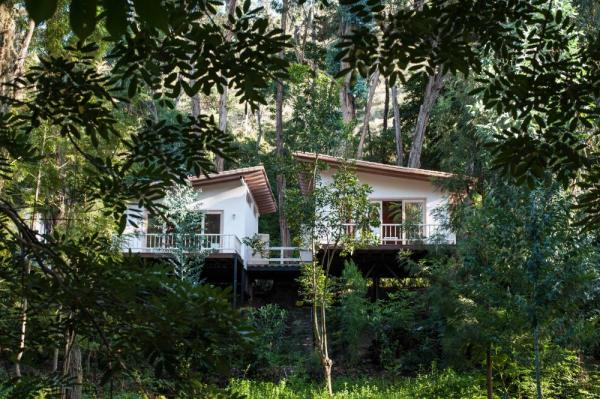 Hacienda Piman's secluded cabanas are nestled in the forest
