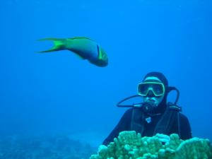 Experience life in an underwater world on your Easter Island tour