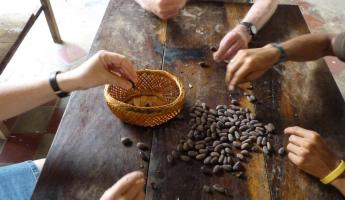 Make your own authentic Nicaraguan chocolate at Choco Museum