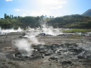 Geothermal activity at the San Jacinto mud pots